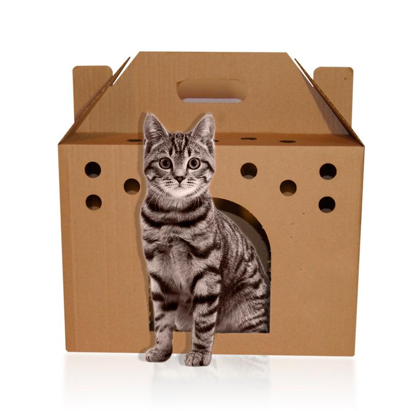 Переноска для кошек из коробки